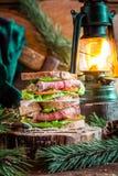 Sandwich mit Fleisch und Gemüse für Holzfäller Lizenzfreie Stockbilder