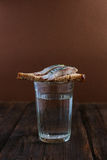 Sandwich mit Heringen und Wodka Stockbild