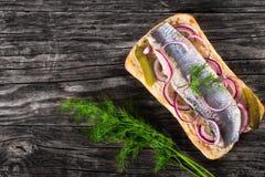 Sandwich mit Heringsfilets, Zwiebel, in Essig eingelegter Gurke und Dill lizenzfreies stockbild