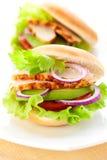 Sandwich mit Huhn stockfotografie
