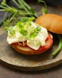 Sandwich mit Käse Lizenzfreie Stockfotos