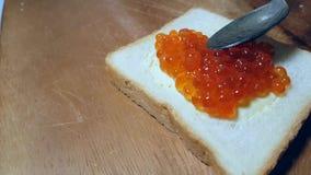 Sandwich mit rotem Kaviarprämie Canape stock video