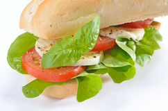 Sandwich mit Tomate und Mozzarella Stockbilder