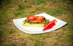 Sandwich mit Tomaten auf einer weißen Platte Stockbilder