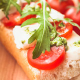 Sandwich with mozzarella Stock Photos