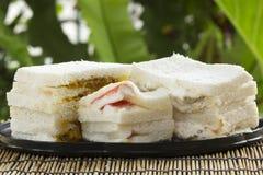 Sandwich op het dienblad wordt geplaatst dat stock afbeeldingen