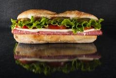 Sandwich op zwarte achtergrond stock fotografie