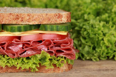 Sandwich with pepperoni, lots of copyspace Royalty Free Stock Photo
