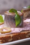 Sandwich with pickled herring, sauce pink, green basil Royalty Free Stock Photography