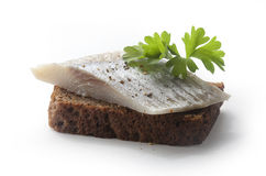 Sandwich with herring Royalty Free Stock Photos
