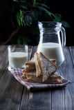 Sandwich and pitcher of milk Stock Images