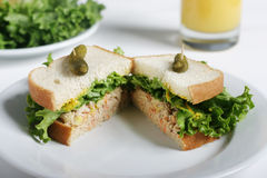 Sandwich on plate. Tuna Sandwich Meal Royalty Free Stock Photos