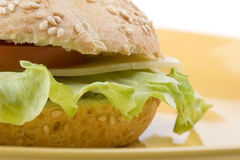 Sandwich on a plate Stock Photography