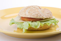 Sandwich on a plate Royalty Free Stock Photos