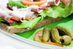 Sandwich on the plate with pickles Stock Image