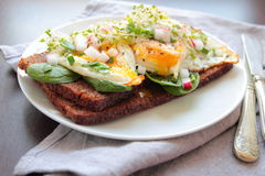 Sandwich with poached eggs Royalty Free Stock Image