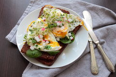 Sandwich with poached eggs Stock Photography