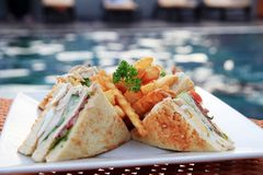 Sandwich portion closeup Stock Images