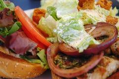 sandwich proche à salade de poissons vers le haut Photo libre de droits