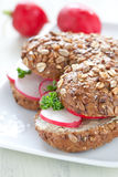 Sandwich with radish. Fresh sandwich with radish and butter Royalty Free Stock Photo