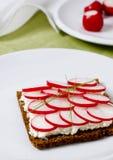 Radish sandwich. Sandwich with radish and cottage cheese Royalty Free Stock Photos