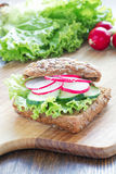 Sandwich with radish and cucumber Royalty Free Stock Image
