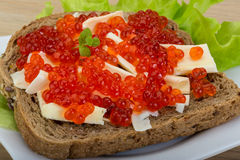 Sandwich with red caviar Stock Images