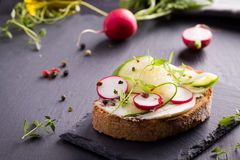Sandwich with red radish, cucumber and fresh herbs. And pepper Stock Photos