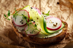 Sandwich with red radish, cucumber and fresh herbs. And pepper Stock Images