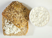 Sandwich resh cottage cheese Stock Photography