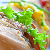 Sandwich rolls with egg, tuna and salad Stock Photo