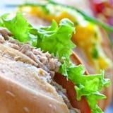 Sandwich rolls with egg, tuna and salad Stock Photo
