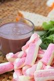 Sandwich rose à chocolat chaud et à thon de guimauves Images libres de droits