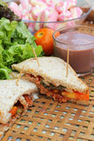 Sandwich rose à chocolat chaud et à thon de guimauves Photo libre de droits