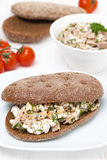 Sandwich of rye bread with tuna, homemade cheese and dill Royalty Free Stock Photo