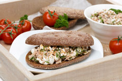 Sandwich of rye bread with tuna and homemade cheese Royalty Free Stock Image