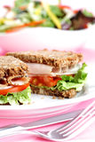 Sandwich sain Photographie stock