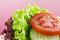 Sandwich sain Photographie stock libre de droits