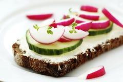 Sandwich sain avec du fromage et le radis de jardin Images stock