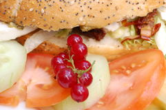 Sandwich with salad. A sandwich with salad and berries Royalty Free Stock Photo