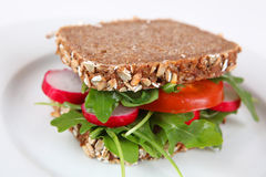 Sandwich with salad. Healthy sandwich with salad on a plate stock image