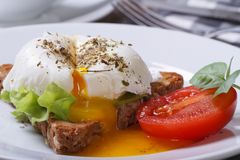 Sandwich with salad, open poached egg Royalty Free Stock Image