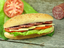 Sandwich with salami Royalty Free Stock Photography