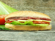 Sandwich with salami Royalty Free Stock Photo