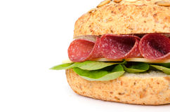 Sandwich with salami and cheese Royalty Free Stock Image