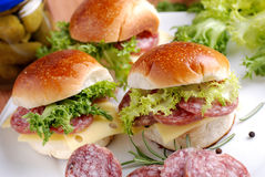 Sandwich with salami Stock Images
