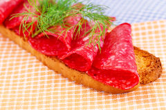 Sandwich with salami. And dill isolated on kitchen towels stock image