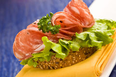Sandwich with Salami and Salad Stock Photography