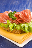 Sandwich with Salami and Salad Royalty Free Stock Photography
