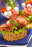 Sandwich with Salami and Salad Stock Images